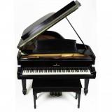 1895 Steinway & Sons Model B Piano